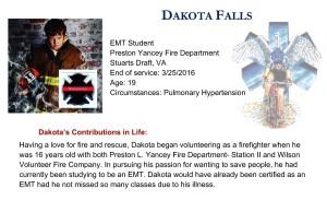 Dakota Falls